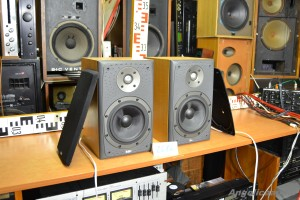 Bowers & Wilkins DM 303 (1)