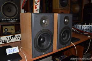 Bowers & Wilkins DM 303 (11)
