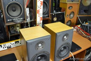 Bowers & Wilkins DM 303 (12)