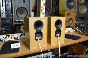 Bowers & Wilkins DM 303 (16)