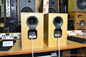 Bowers & Wilkins DM 303 (19)