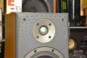 Bowers & Wilkins DM 303 (8)