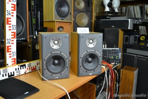 Bowers & Wilkins DM 303