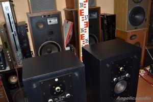 RS 334 Elektronika Praha AZS 223 (14)