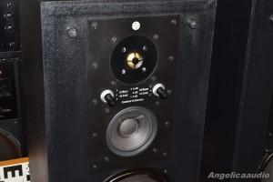 RS 334 Elektronika Praha AZS 223 (19)