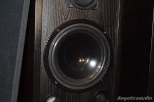 AQ 305 (3)