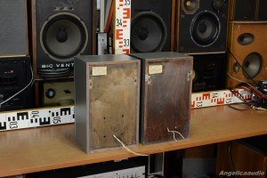 15 AC 109 Acoustic System USSR (3)