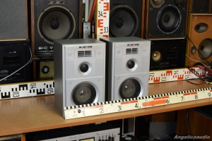 15 AC 109 Acoustic System USSR (4)