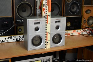 15 AC 109 Acoustic System USSR (5)