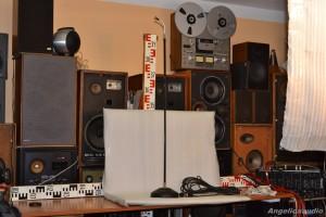 LABOR W MD3 microphone (18)