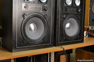 Isophon profi sound SK 9004 (20)