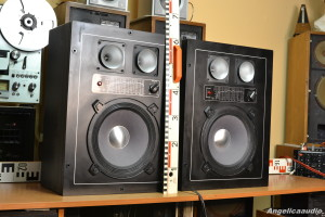 Isophon profi sound SK 9004 (22)