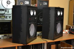 Isophon profi sound SK 9004 (25)