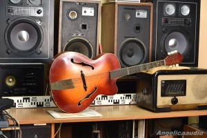 Cremona Luby Gibson Guitar Kytara